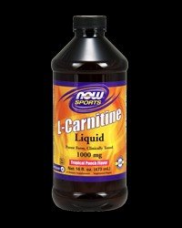 L-Carnitine Liquid Tropical Punch 1000 mg - 16 oz.